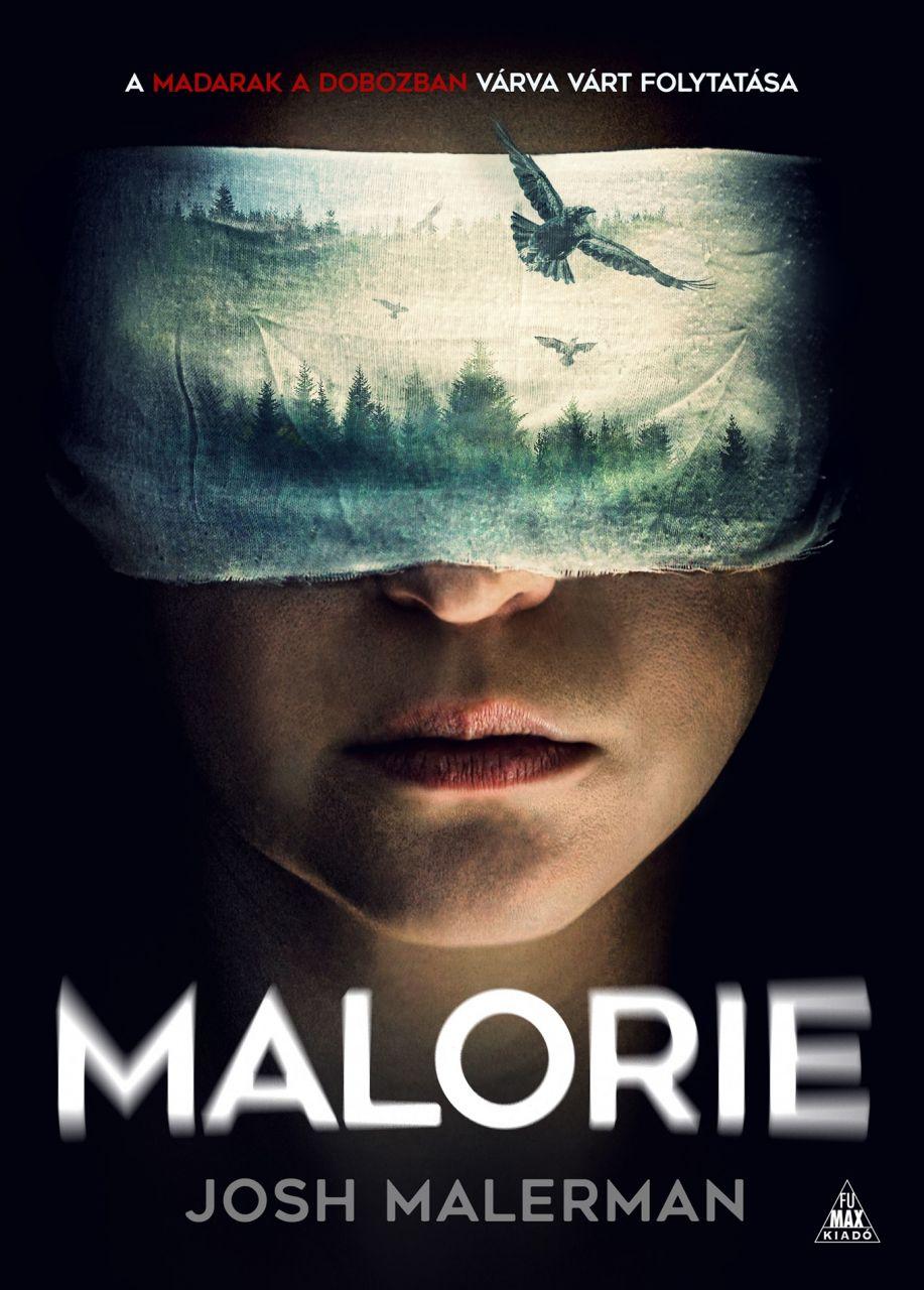 Josh Malerman: Malorie (Madarak a dobozban 2.)